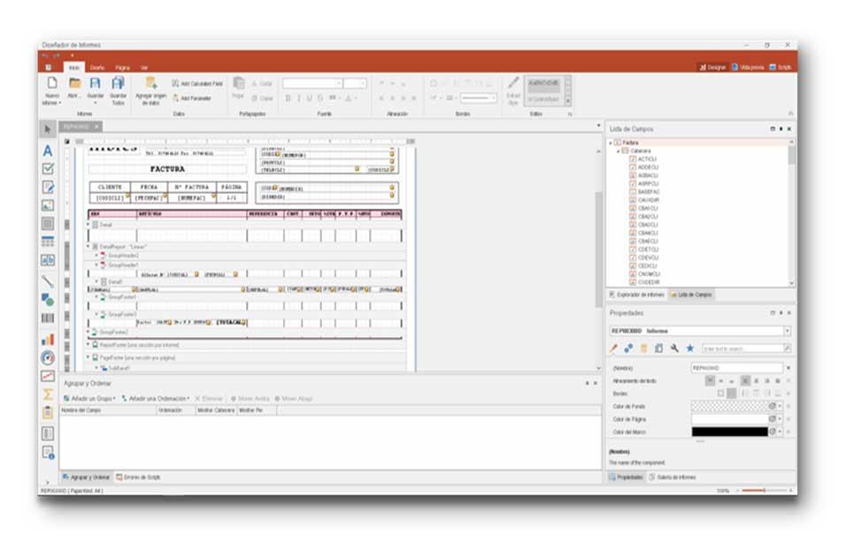 Software GN6 de Informes personalizados